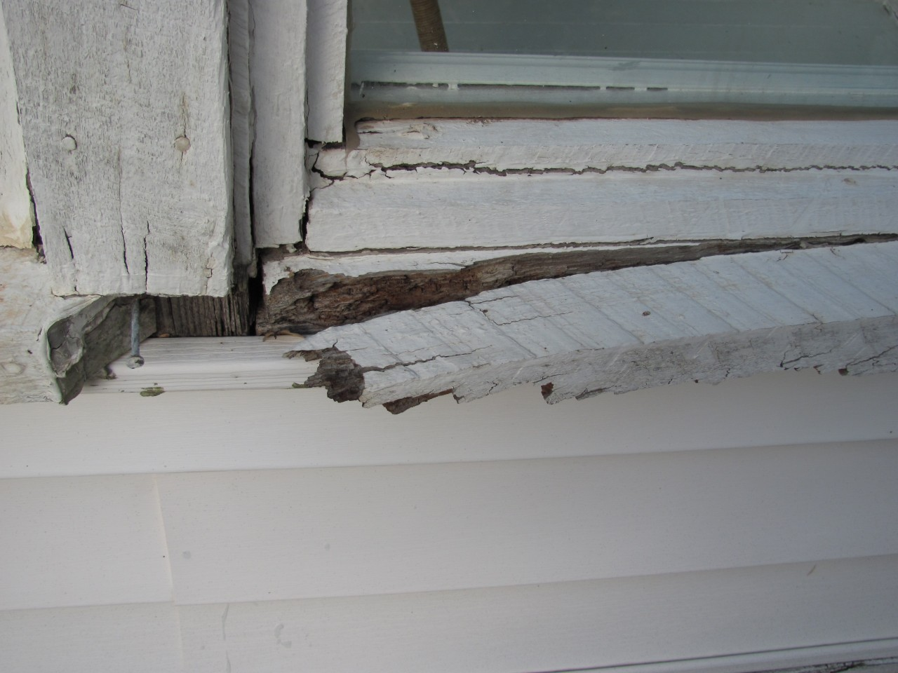 water-logged-siding